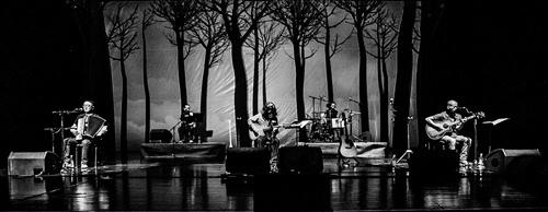 野孩子乐队演唱会