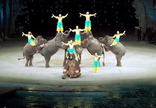 环球城国际大马戏剧院图片2
