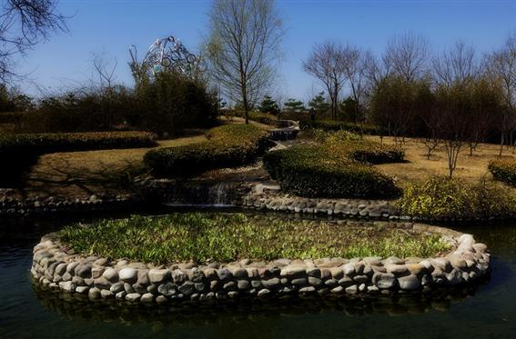 朝阳公园图片1