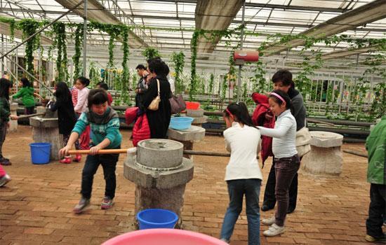 中国儿童少年地子自然体验基地场馆图
