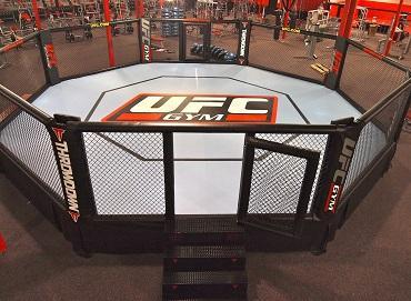 UFC格斗八角笼