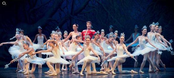 乌克兰芭蕾舞天鹅湖