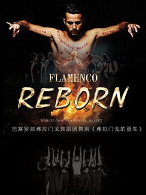 巴塞罗那弗拉门戈舞蹈团舞剧《弗拉门戈的重生》